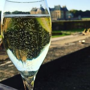 champagnereflection
