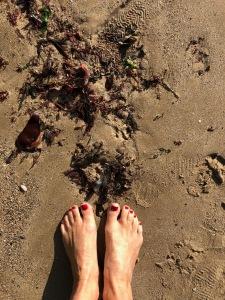 barefootarromanches