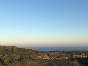 viewofseafromchateaulhospitalet