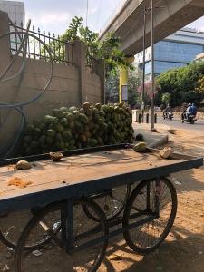 coconutcart