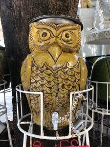 owl water